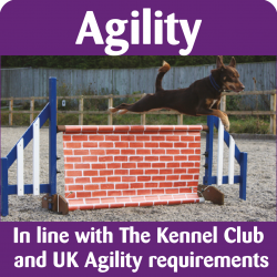 Agility Banners