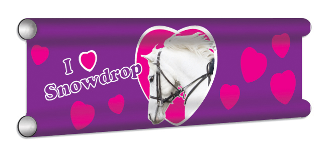 Hearts Personalised Showjump Banner Filler