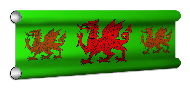 Welsh Flag Showjump Banner Filler