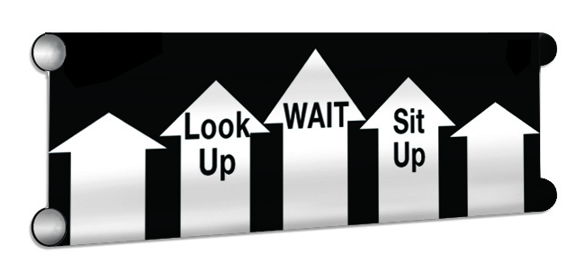 LookUp_Wait_SitUp Showjump Banner Filler
