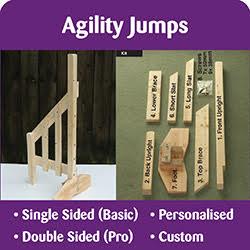 Agility Jumps